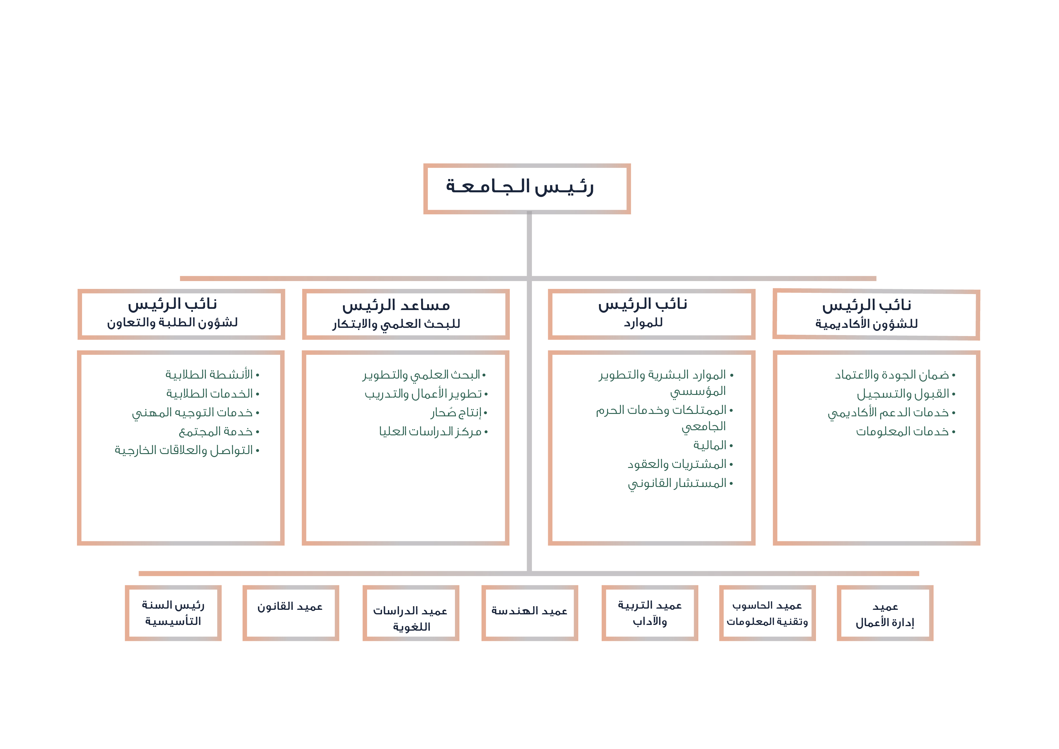 SU Organisational structure